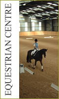 Welcome to Kings Equestrian Centre